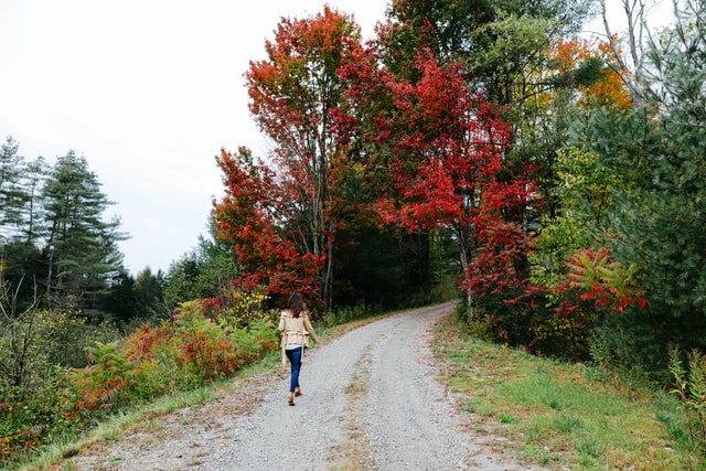 Woman walking into Vermont forest.